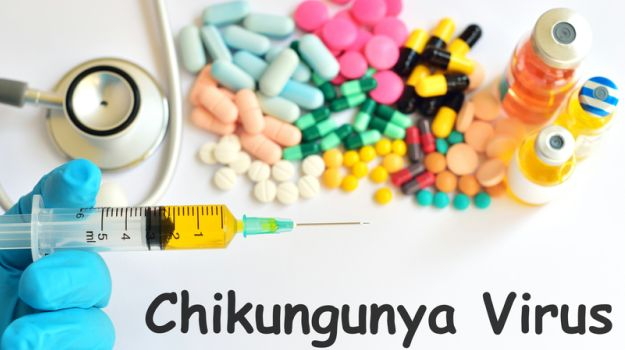 Chikungunya Cases On A Rise Since 2006